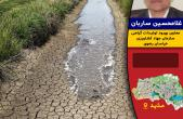 سرمازدگی قیمت زردآلو، آلو و بادام را افزایش میدهد/خراسان رضوی رتبه پنجم کشور در خشکسالی